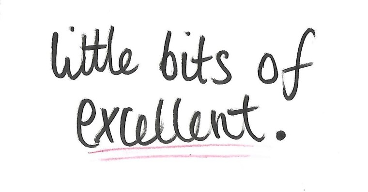 little-bits-of-excellent